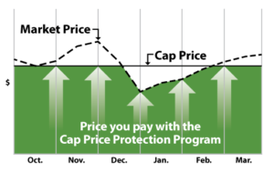 AMG-CAP-Plan-Customer-Chart